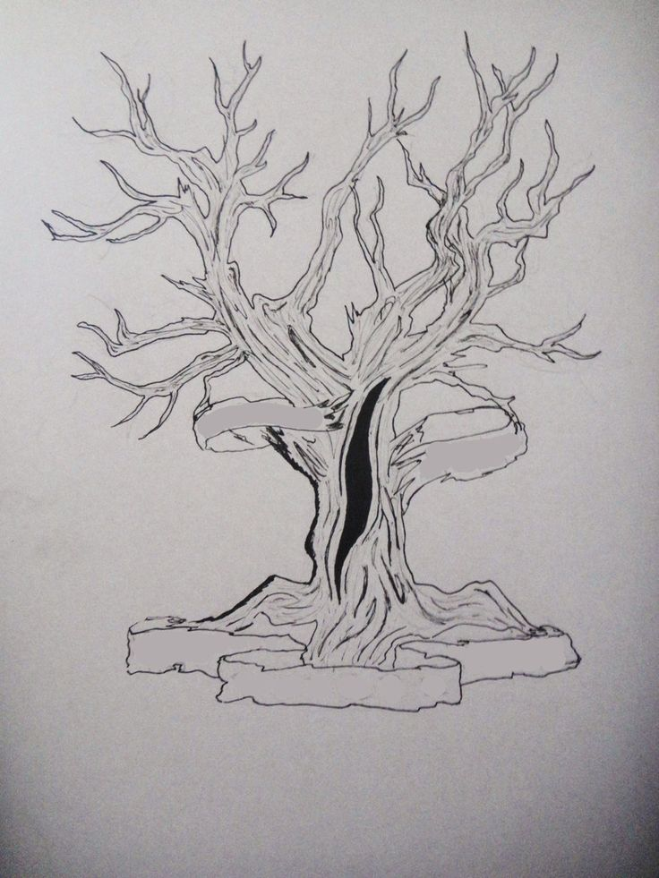 27 best tree outline tattoo images on pinterest tree drawings tree outline and tree tattoos. Black Bedroom Furniture Sets. Home Design Ideas