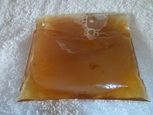 How To Divide A SCOBY (Remove Baby from Mother) - Kombucha Home - Learn How to Make Awesome Kombucha