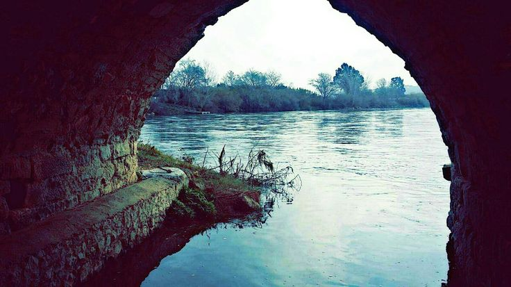 Río Ebro, Miravet #Nature