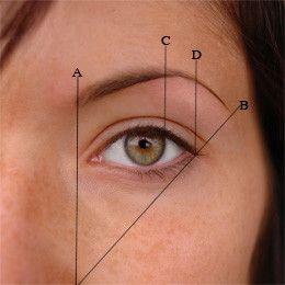 La technique pour connaitre la forme d'épilation d'un sourcil