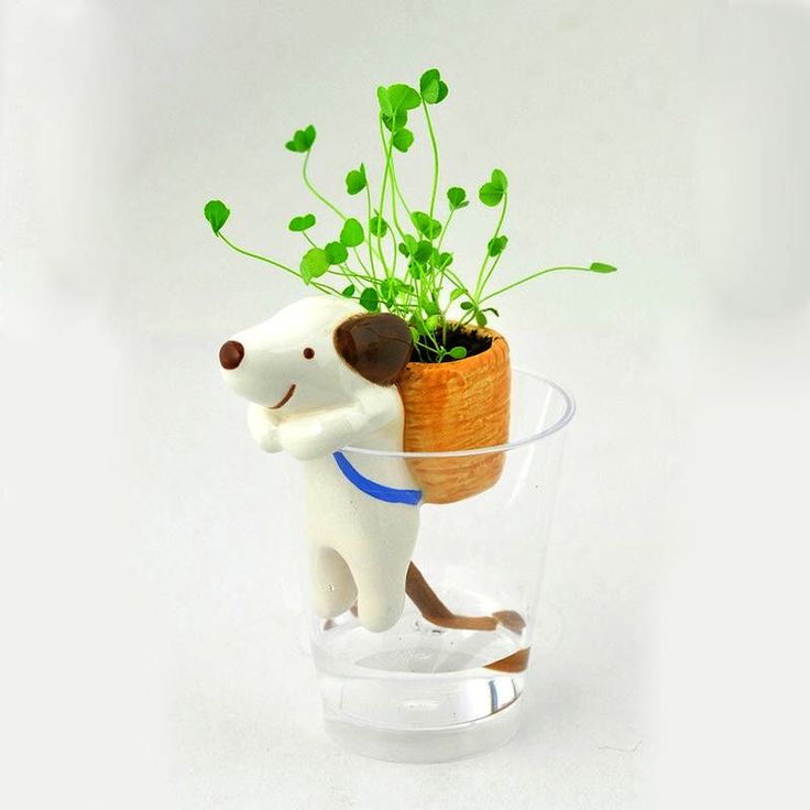 self watering animal planter instructions