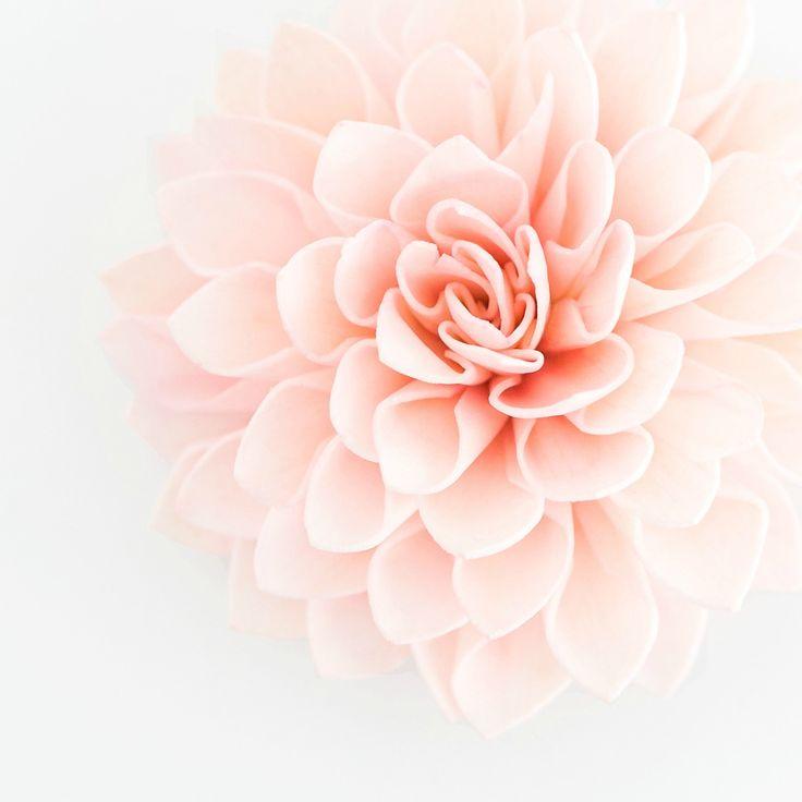 10 Blush Wooden Flowers, Wedding Decorations, Wedding Flowers, Rustic Wedding Decor