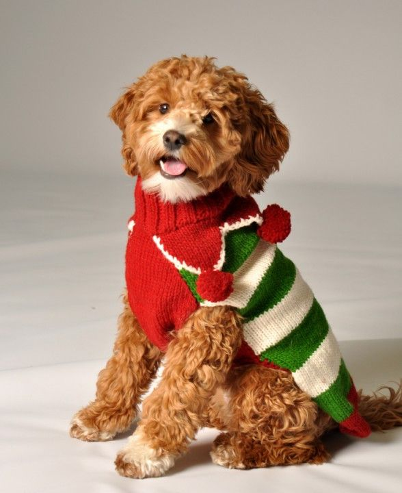 All tails will be waggin' when your pooch steps out in this warm and cozy Christmas Elf Dog Sweater by Chilly Dogs. Chilly Dog Sweaters are made following the Fair Trade guidelines. All sweaters are h
