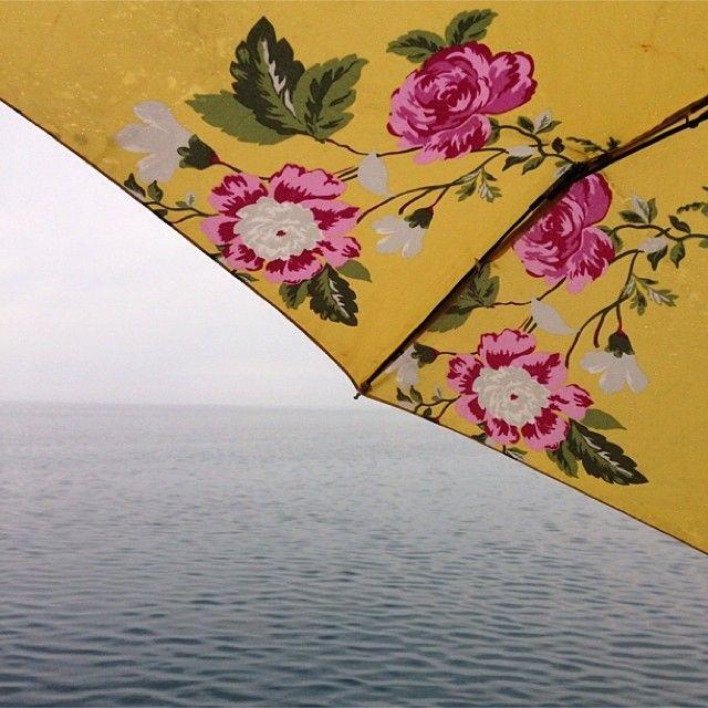 Bright umbrellas on rainy days | instagram @ mycreative