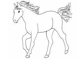 bildergebnis für bibi und tina ausmalbilder zum drucken kostenlos | malvorlagen pferde