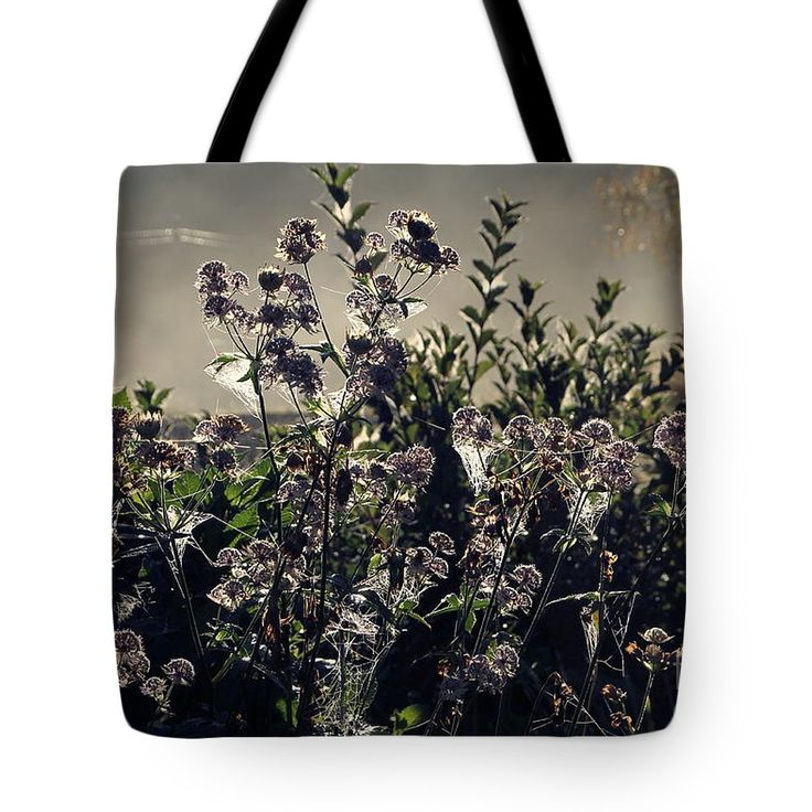 Morning Dew Backlight Tote Bag by Sverre Andreas Fekjan.  The tote bag is machine washable, available in three different sizes, and includes a black strap for easy carrying on your shoulder.  All totes are available for worldwide shipping and include a money-back guarantee.