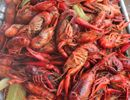 Your+Perfect+Crawfish+Boil+Is+9+Steps+Away  - Esquire.com