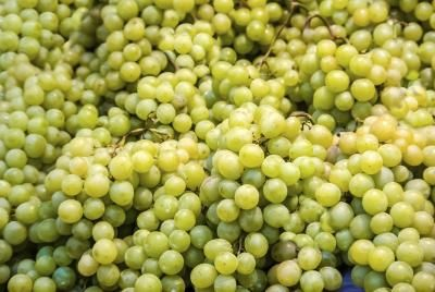 Green Seedless Grapes - low in calories,; contain anti-oxidants, Vitamin C and others, minerals such as magnesium.