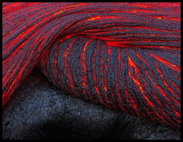 Folding Lava, Kilauea, Hawaii. Justin Reznick.  I realize this is neither plant or animal life, but it's still a natural phenomena that deserves some recognition.  Some of the most amazing rock formations come from cooled lava.