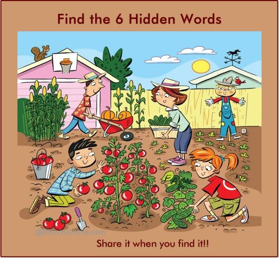 Find 6 hidden words in the picture 3