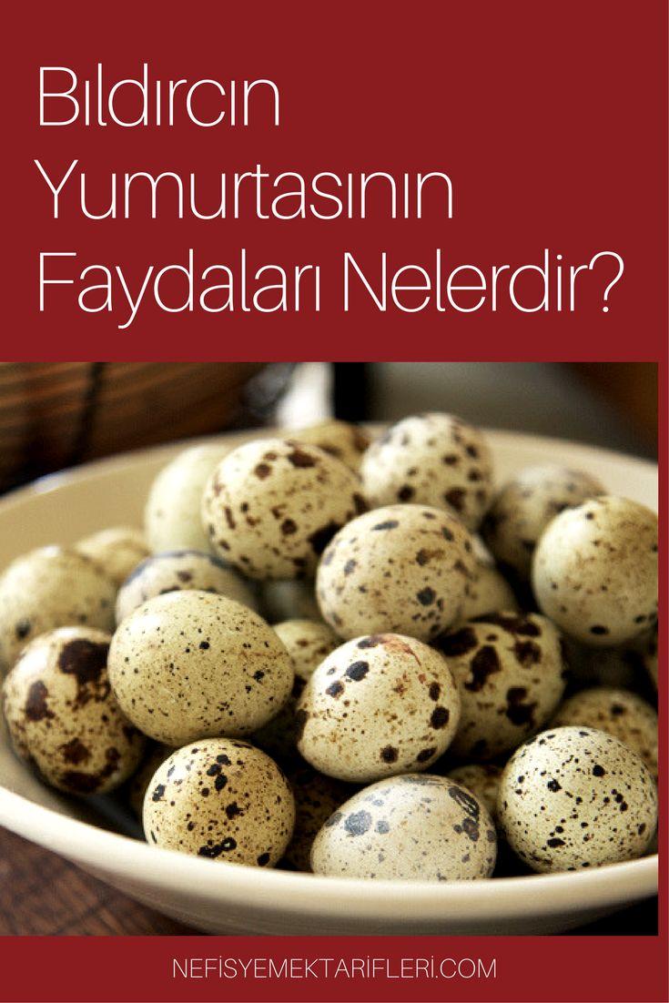 #nefisyemektarifleri #yemektarifleri #faydalıbilgiler #sağlıklıyaşam #bıldırcınyumurtası