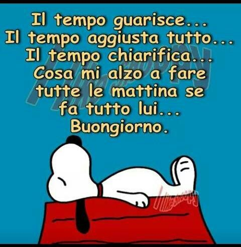 Proverbiale  saggezza di Snoopy: Il tempo è una delle cose più importanti che ti siano state donate,non sprecarlo a fare cose inutili(Gian)........................... Proverbial wisdom of Snoopy: Time is one of the most important things that you have been given, do not waste it doing useless things