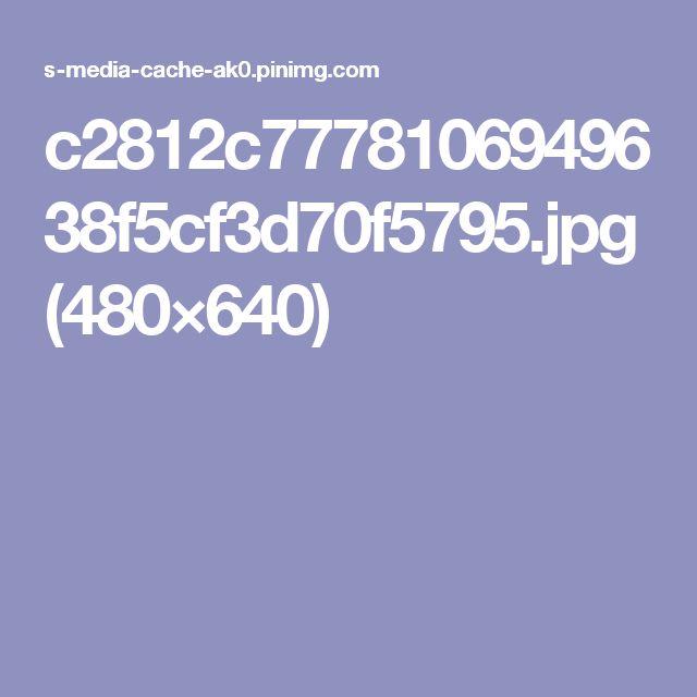 c2812c7778106949638f5cf3d70f5795.jpg (480×640)