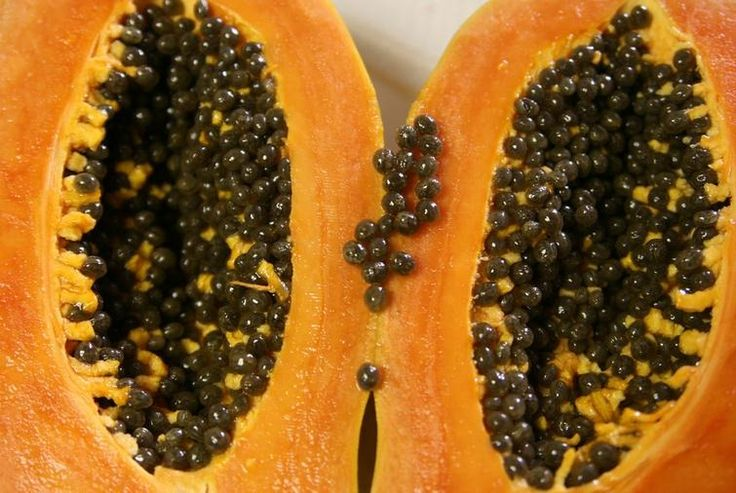 Cualidades de las semillas de papaya
