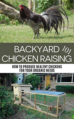 Backyard Chicken Raising 101: How to Produce Healthy Chickens for Your Organic Needs (backyard chicken, backyard chicken coop, backyard chicken for beginners, ... gardening, homesteading, raising chickens) by April Stewart, http://www.amazon.com/dp/B00NVGFTM4/ref=cm_sw_r_pi_dp_ljMBub0XYN9DW