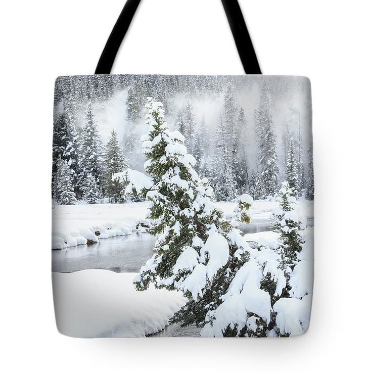 Snow Sheer Tote Bag by Ann Skelton.  The tote bag is machine washable, available in three different sizes, and includes a black strap for easy carrying on your shoulder.  All totes are available for worldwide shipping and include a money-back guarantee.