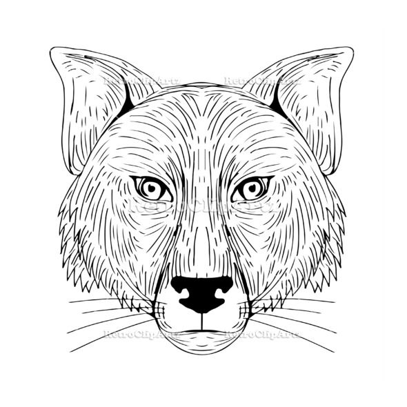 Fox Head Front Drawing Vector Stock Illustration.   Illustration of a Fox Head Front view done in hand sketch Drawing style. #illustration #FoxHead