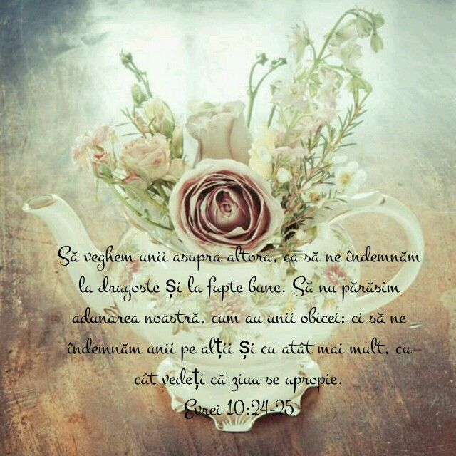 Evrei 10:24-25