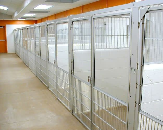 Here's an idea for the kennels for the rescue and training facility- block divider walls (thin enough to save space but still be sturdy) and instead of those expensive metal bars use welded wire fencing (like at the barn)- easy to fix & replace/low cost! Just have to figure out what to do for the gates : )