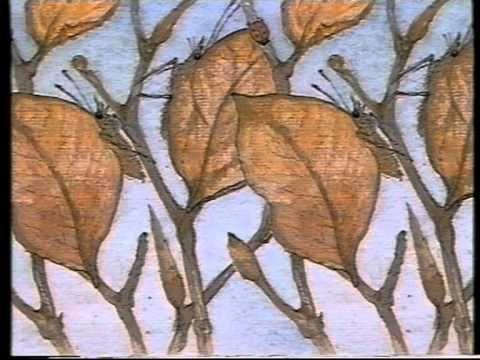 Boek: Van mug tot olifant Heel veel informatie over dieren. Boeiend voor elke leeftijd. Digitale versie: interessante ordening