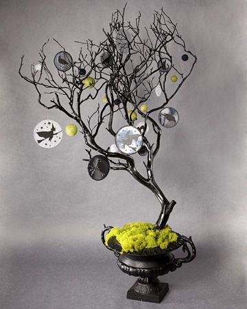 Spooky Manzanita Tree