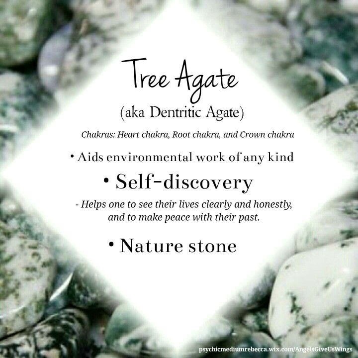 Tree Agate crystal meaning