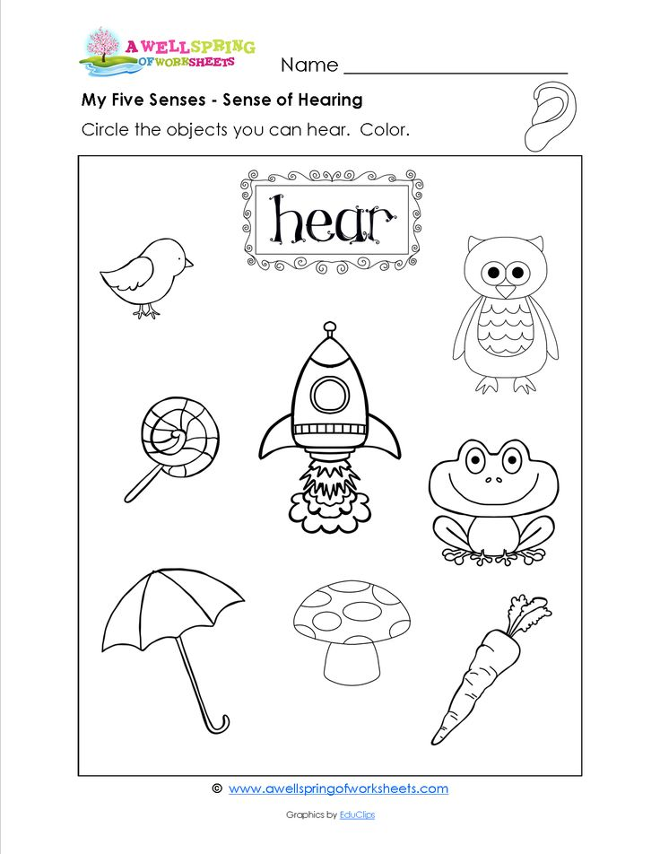 grade level worksheets kindergarten science senses preschool 5 senses preschool my five senses. Black Bedroom Furniture Sets. Home Design Ideas