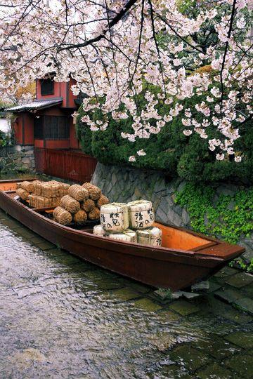 Takase river Kyoto, Japan  高瀬川一之船入 桜