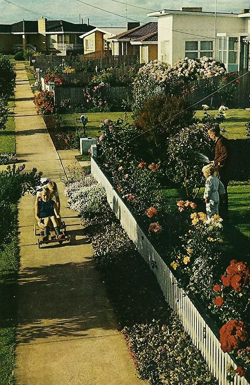Suburban street in Victoria, Australia National Geographic | February 1971