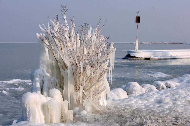 "A ""frozen"" tree. Lake Balaton, Fonyod, Hungary. EFE/ Gyoergy Varga 