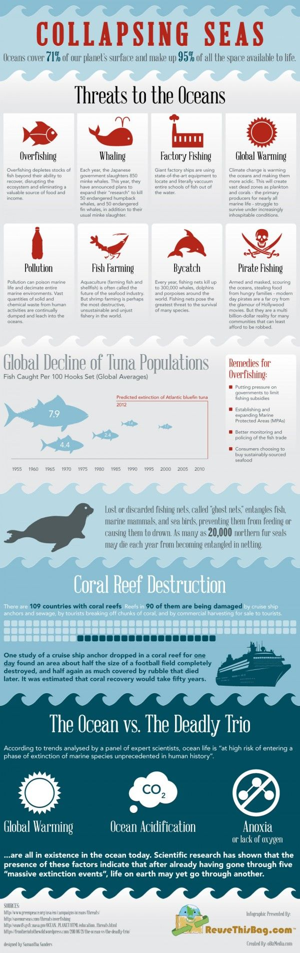 This pin uses a perfect depiction of color because the boldness of the red font is alarming. It easily catches your attention against the blue hues and white on the infographic. The blue is very suiting for the theme of the infographic: The ocean.
