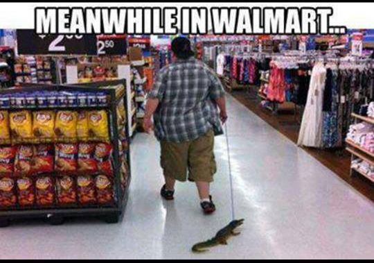 Meanwhile at Walmart...                                                                                                                                                                                 More