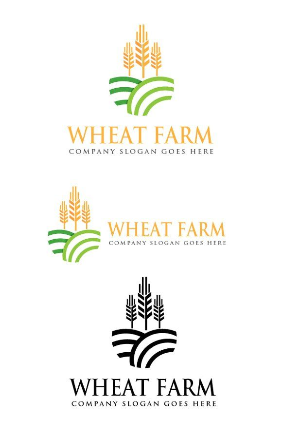 Wheat Farm Logo by goodigital13 on @creativemarket