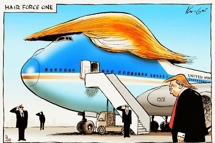 It's Hair Force One by Mark Knight
