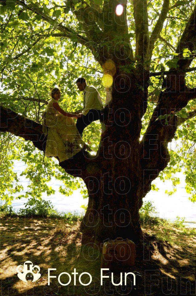 Natalie & Eli in tree, Boatshed, Cambridge, NZ