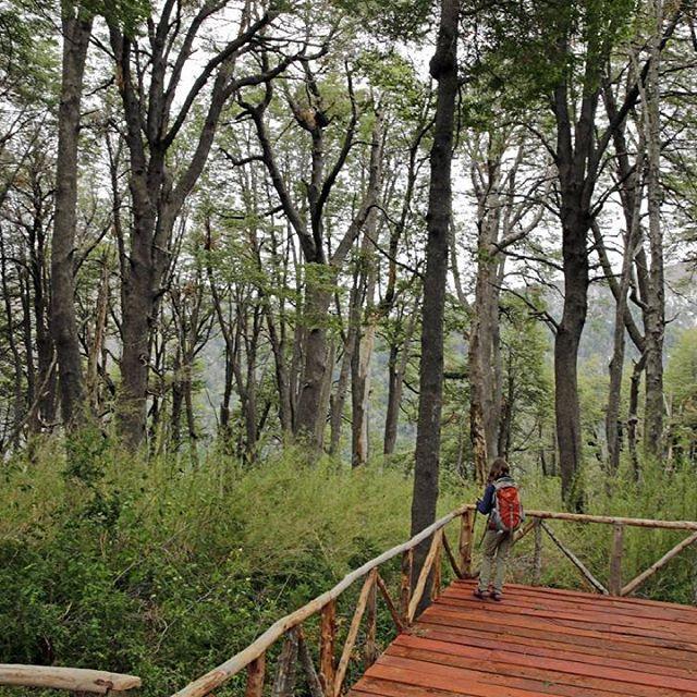 #TurismoSanClemente    MIRADOR CONCONES, RESERVA NACIONAL ALTOS DE LIRCAY.