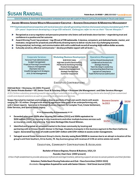 business development finance one page resume sles
