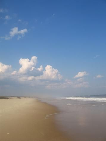 Fire Island New York    The most calming walk on any beach...anywhere...