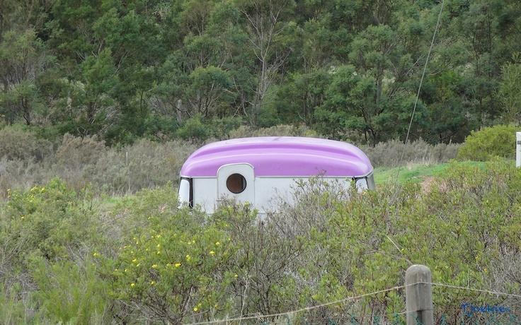 Random Purple Caravan somewhere on a  gravel road between Franschhoek and Bot River - South Africa