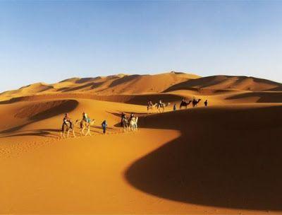 Taj-Tours: Excursion maroc pas cher