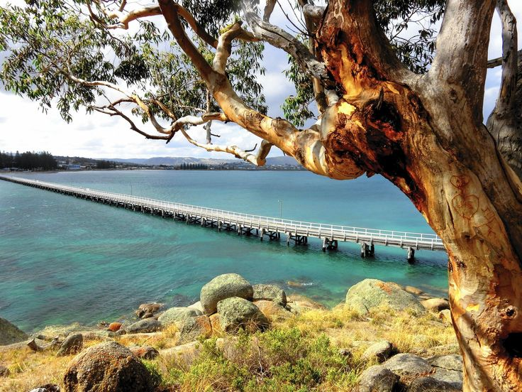Just 27 miles south of Adelaide, the capital of the state of South Australia, is a little-known Mediterranean-style region called the Fleurieu Peninsula with world-class wines, local produce and passionate growers, stellar beaches and small towns with a thriving cuisine scene.