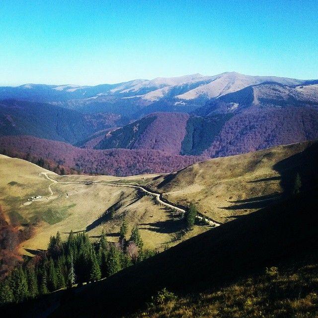 November in the Carpathian Mountains. #hiking #outdoors #nature #Azuga #Romania (A. Carman)
