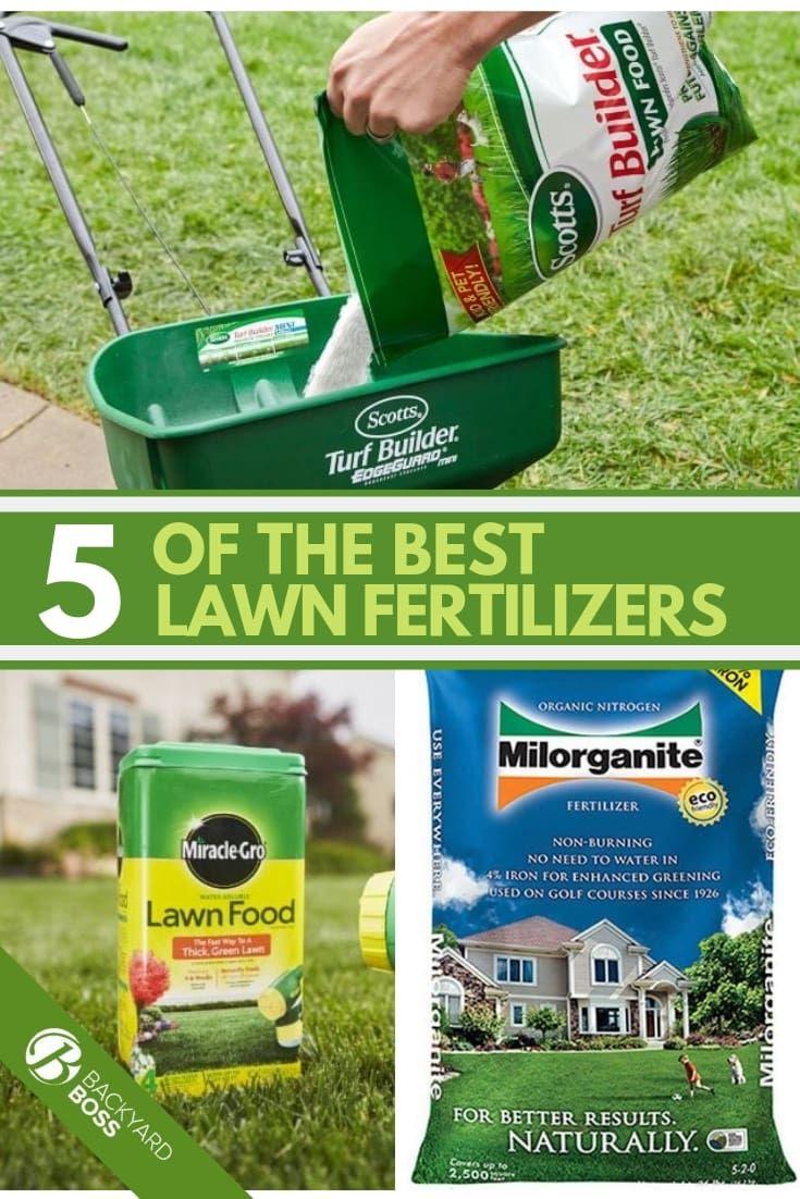5 Of The Best Lawn Fertilizers Lawn Fertilizer Lawn Care Tips