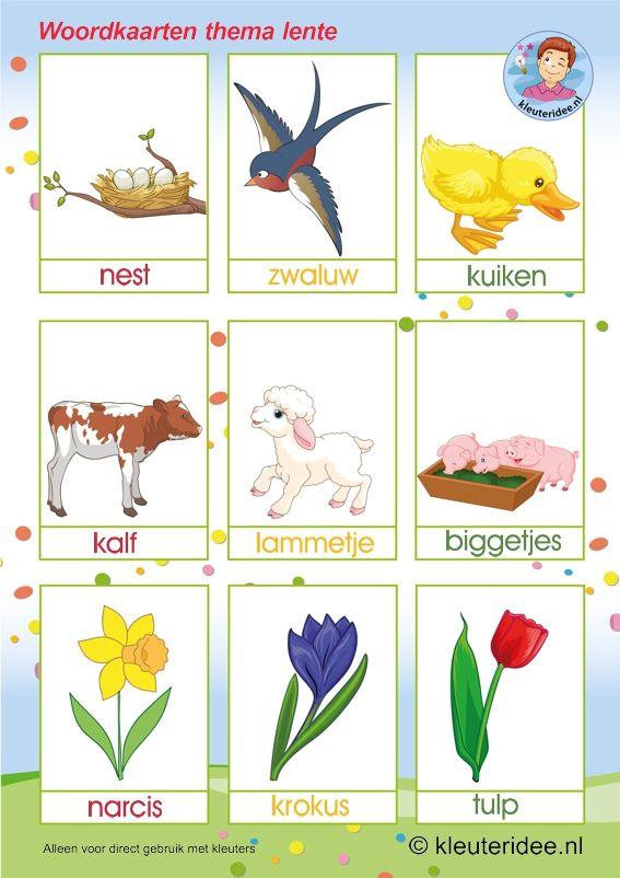 Woordkaarten , thema lente, preschool spring words, free printable.