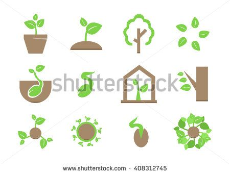 stock-vector-sprout-icon-set-plant-and-sprout-growing-icons-flat-design-vector-408312745.jpg (450×341)