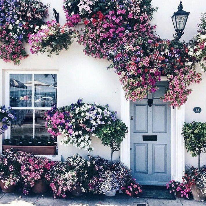 """Portas que convidam. """" Abri a porta Apareci A mais bonita Sorriu pra mim Naquele instante Me convenci O bom da vida Vai prosseguir Vai prosseguir Vai dar pra lá do céu azul Onde eu não sei Lá onde a lei Seja o amor E usufruir do bem do bom e do melhor Seja comum Pra qualquer um Seja quem for Abri a porta Apareci Isso é a vida É a vida sim """" Dominguinhos Música: Abri a porta @OlhardeMahel #Dominguinhos @misskatyenglish #acordosom #música #canção #porta #autor #letra #imagem #fotografia…"""