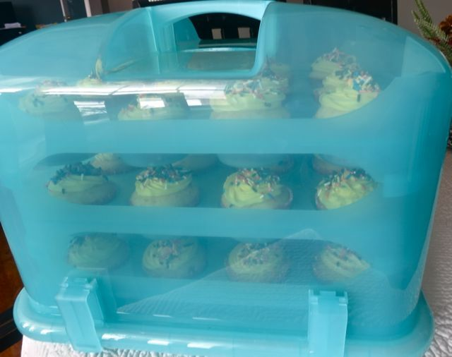 The BEST cupcake carrier EVER! LOVE IT!