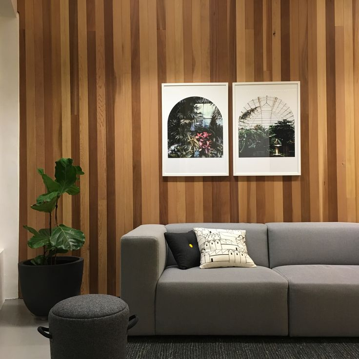 Minimal warm interior with cedar panelling.