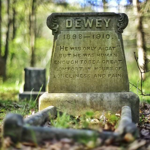 """The Grave of Dewey, 1898-1910. """"He was only a cat, but he was human enough to be a great comfort in hours of loneliness and pain."""" by Paul Koudounaris"""