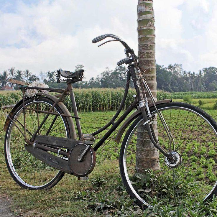 Bali roadside, a vintage bicycle 🚴.